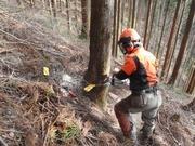 有限会社青木林業のアルバイト情報